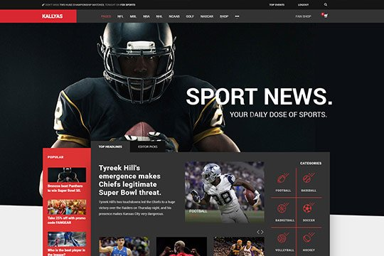Sport WordPress Theme - Kallyas