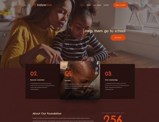 Charity WordPress Theme - Kallyas