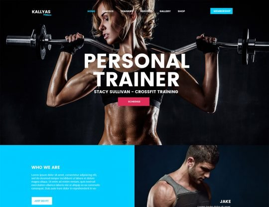 Fitness WordPress Theme - Kallyas
