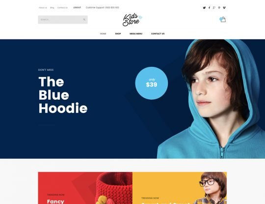 Kids Store WordPress Theme - Kallyas