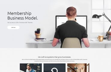 Membership Subscription WordPress Theme - Kallyas