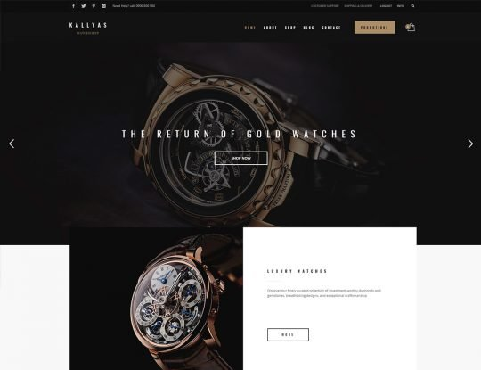 Watches WordPress Theme - Kallyas