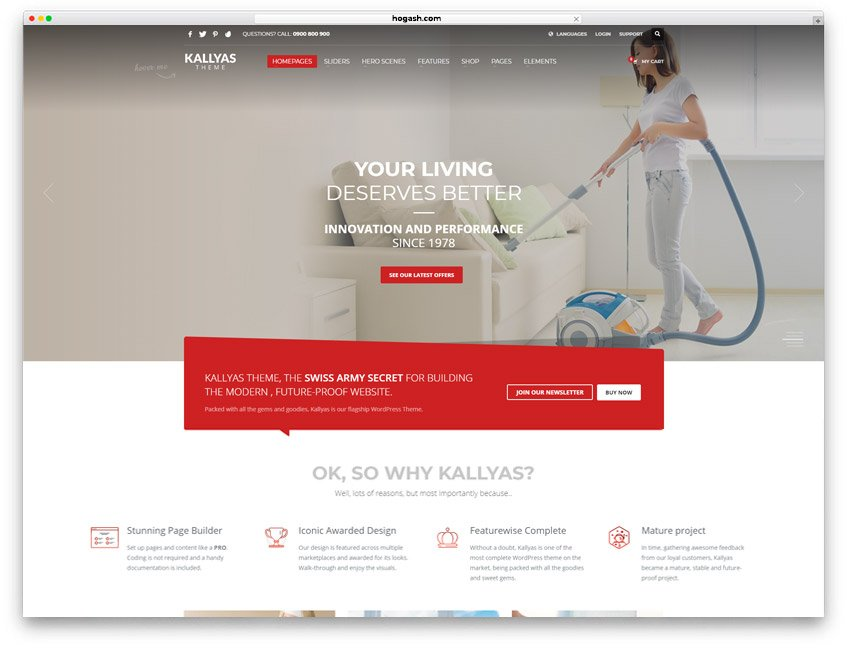 Dry Cleaning & Laundry Business Website WordPress Theme